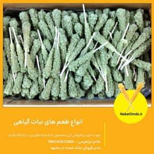 انواع طعم های نبات گیاهی